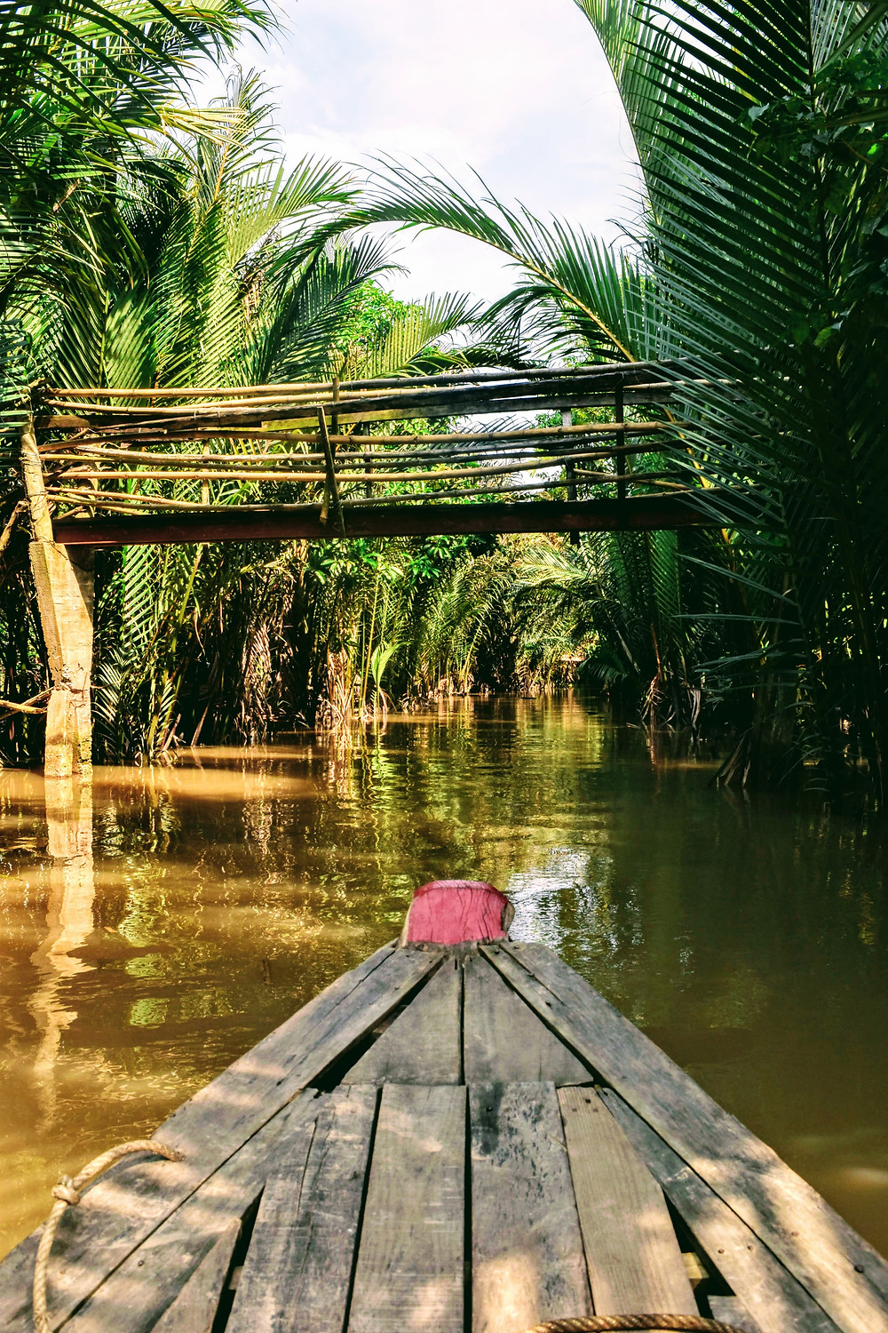 canals of mekong delta