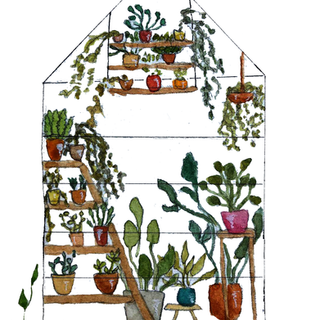greenhouse .png