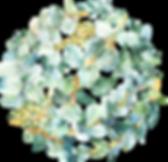 EucalyptusWreaths&Arrangements_01.png