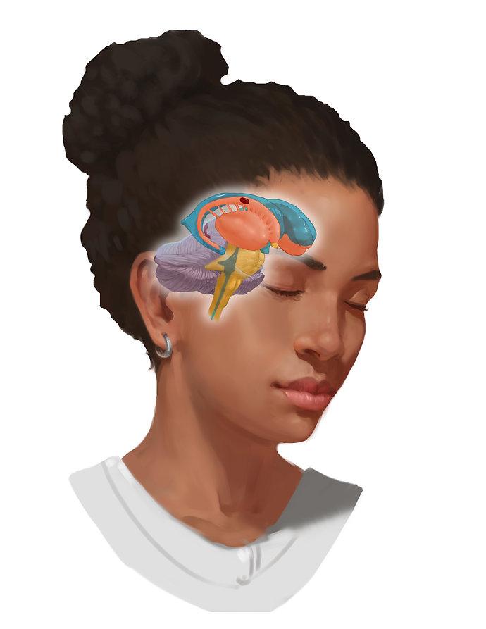 SupAntLat Brain.01.20.2019.jpg