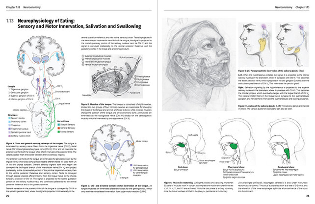 Neurophysiology of Eating