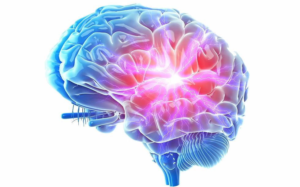 brain 2.0.webp