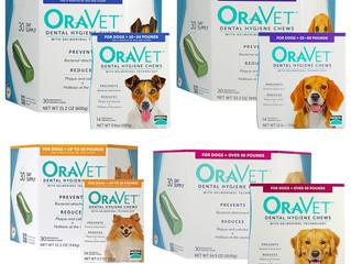 Let's Make your Pet's Teeth Sparkle!