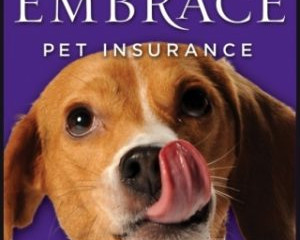 Is Pet Insurance really worth it?! YES!