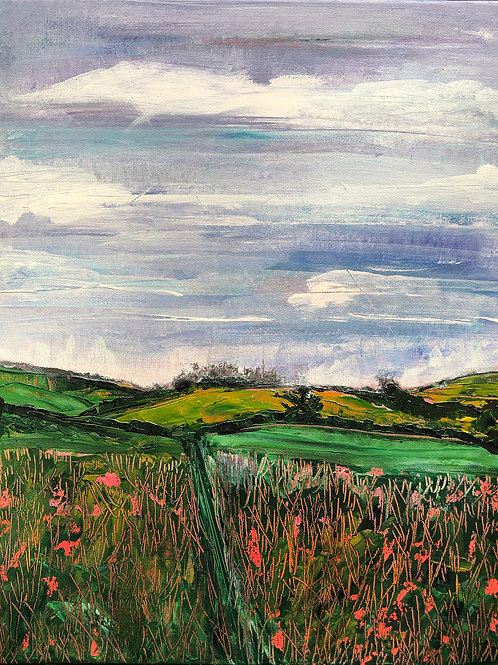 Poppy Fields at Broadchalk, Wilts by Tina Scahill