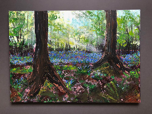 Bluebells #4 by Tina Scahill