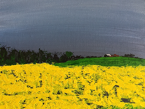 Hampshire Field by Tina Scahill