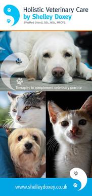 Shelley Doxey veterinary care