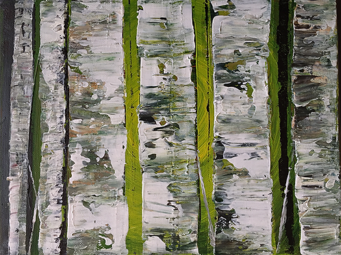 Spring birches by Tina Scahill