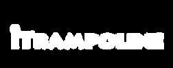 iTrampoline Logo-02.png