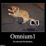 omnium et les animaux de compagnies.jpg