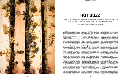 10-12_VRAW_ISSUE02_Bees-1.jpg
