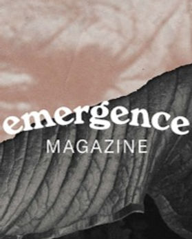 emergence_edited.jpg