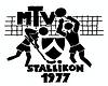 Logo MTVS.png