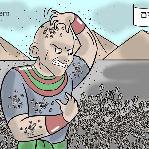 Lice - Hebrew.jpeg