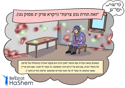 Parashat Tazria - Hebrew.jpg