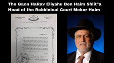 Rav Eliyahu Ben Haim.jpeg