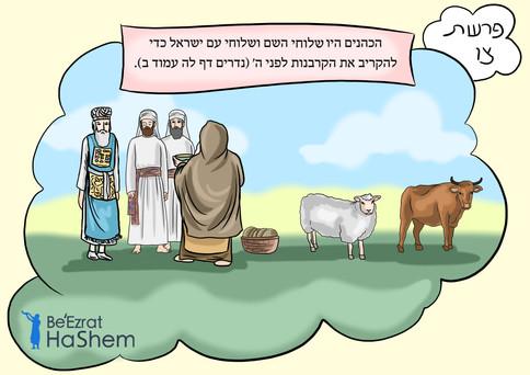 Parashat Tzav - Hebrew.jpg