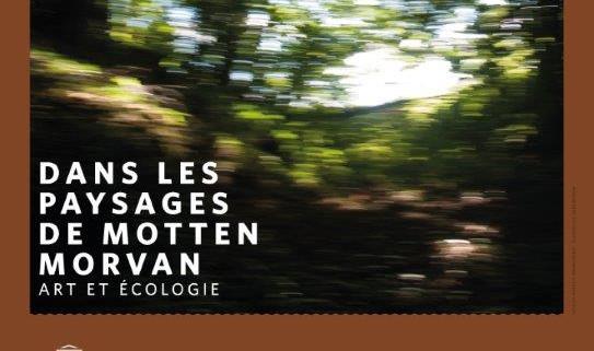Affiche expo - dans les paysages de Mott