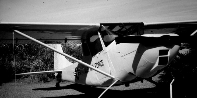 Copy of 36x18 bird-dog BW.jpg