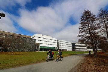 ユヴァスキュラ大学