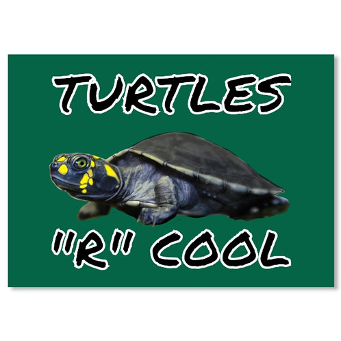TURTLES R COOL STICKER