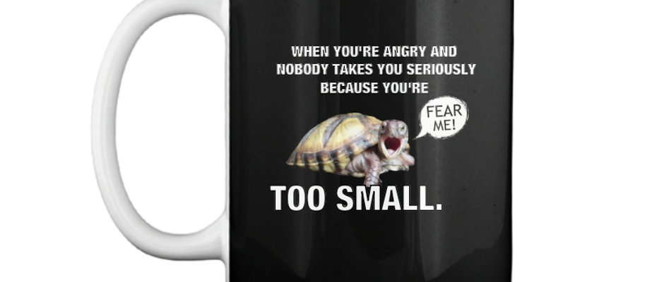 SMALL TURTLE PROBLEMS MUG