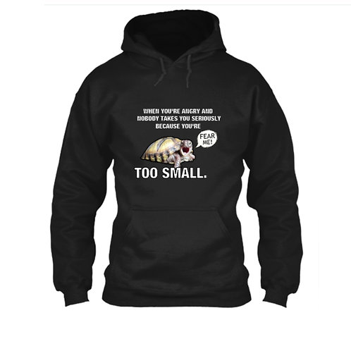SMALL TURTLE PROBLEMS HOODIE