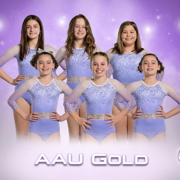 AAU Gold.jpg