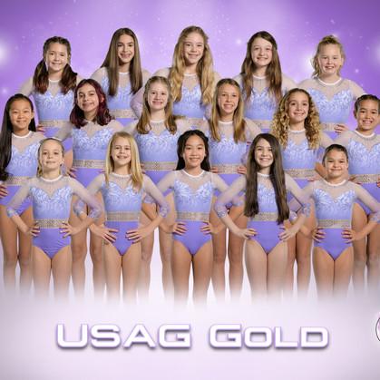USAG Gold.jpg