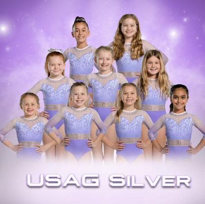 USAG Silver.jpg