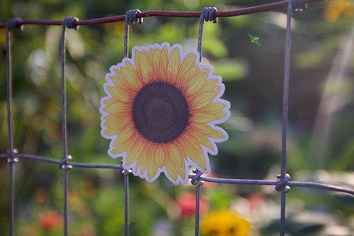 Sunflower (M)