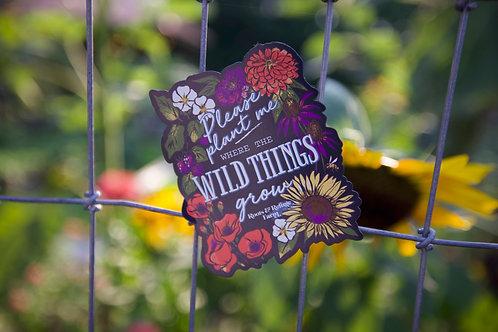 Wild Things (M)