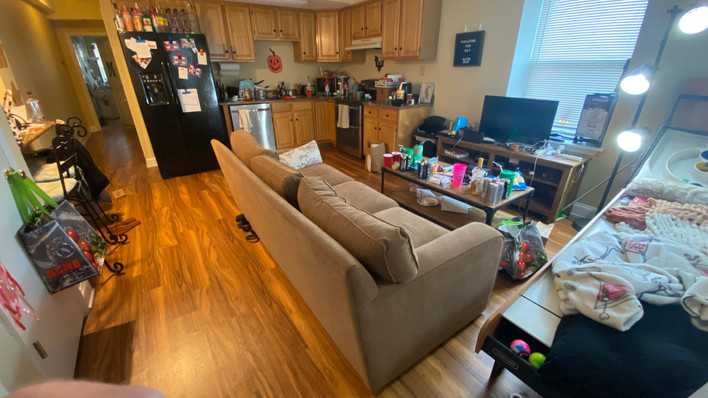 Flat Living Room and Kitchen.jpg