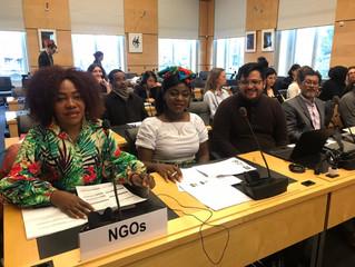 Red Somos y Plataforma LGBTI por la Paz, presenta informe paralelo ante el CERD en su sesión número