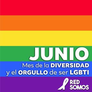 JUNIO MES  DE ORGULLO PARA LA CIUDADANIA PLENA LGBTI