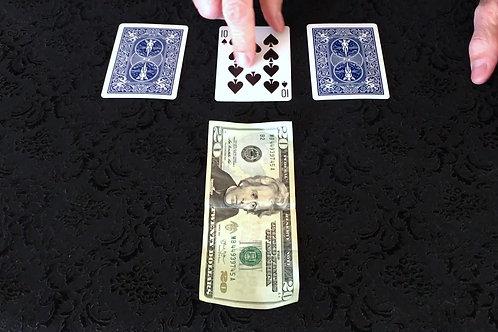 Money Lady Monte