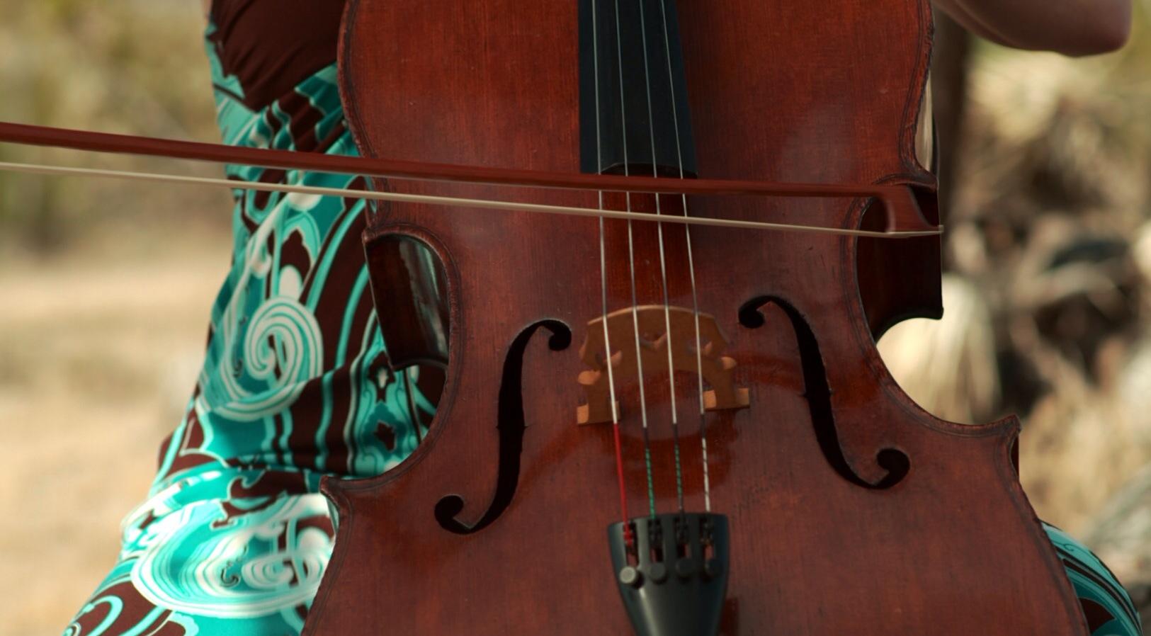Hi_res_violin.JPG