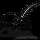 логотип пнп.png