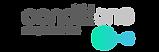 Logo Condition-Com Assinatura.png