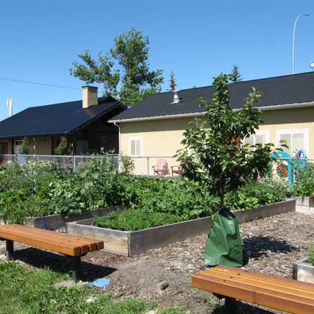 Six Remaining Community Garden Plots Are Available