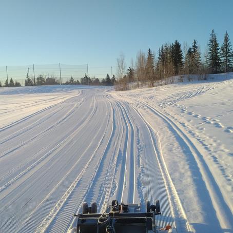 Cross-Country Skiing in Calgary?