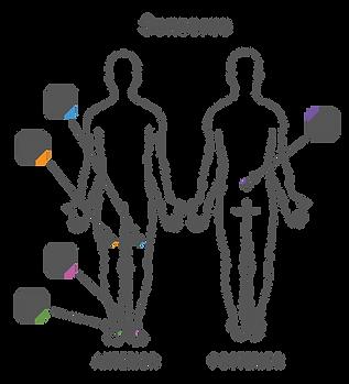 sensores-01.png