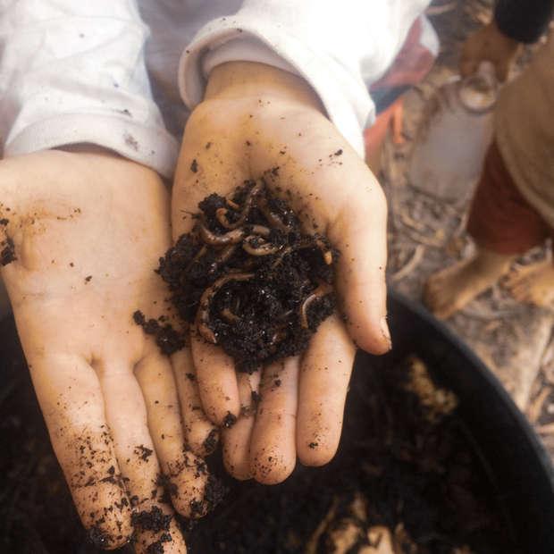 Flourish_Earth_School_Worms.jpg