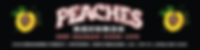 peaches logo.png