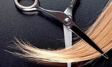Danny G Pulido, Haircut, Waxing, Men, Women, Color, Corrective, Blowout, Education