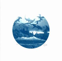 cyanotype-print-craig-keenan-blueprint-s