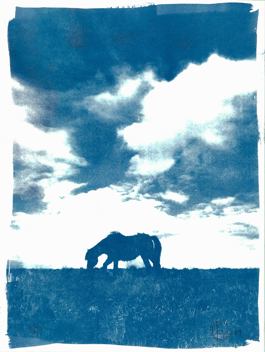 cyanotype-print-craig-keenan-blueprint-h