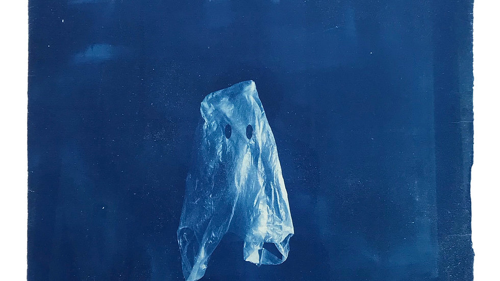 ...and the ghosts of plastic bags will walk the earth for centuries to come...