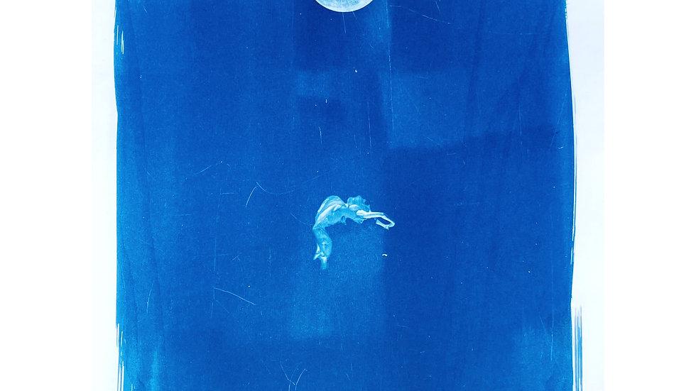 Full Moon Falling